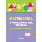 Invatare, aprofundare si recapitulare - matematica, clasa a VI-a - Nadia Barbieru imagine librariadelfin.ro