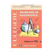 CULEGERE. Probleme de matematica, clasa VII-a (Liliana Niculescu) imagine librariadelfin.ro