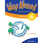 Way Ahead 6, Grammar Practice Book, (Caiet de gramatica engleza pentru clasa VIII-a)