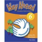 Way Ahead 6, Manual de limba engleza pentru clasa a VIII-a. Pupil's Book - Mary Bowen