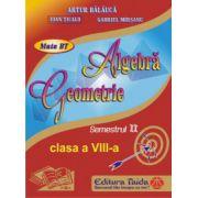 Auxiliar de Algebra si Geometrie - clasa a VIII-a, sem II (2014) imagine librariadelfin.ro