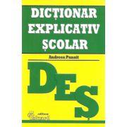 Dictionar Explicativ Scolar - Andreea Panait