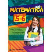 MATEMATICA - clasele V-VI. Tipuri de probleme, Performanta (Nicolae Ivaschescu)