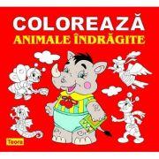 Coloreaza animale indragite - Diana Rotaru