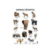 Plansa Animale salbatice imagine librariadelfin.ro