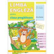 Limba engleza pentru clasa pregatitoare. Workbook - Arina Damian imagine librariadelfin.ro