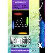 Manual matematica clasa a X-a trunchi comun - Constantin Nastasescu imagine librariadelfin.ro