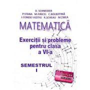 Matematica, exercitii si probleme pentru clasa a VI-a, semestrul I - Delia Schneider imagine librariadelfin.ro