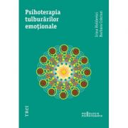 Psihoterapia tulburarilor emotionale - Irina Holdevici imagine librariadelfin.ro