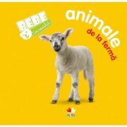 Imagine Animale De La Ferma - Bebe Invata