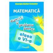 Matematica. Clasa 6. Exercitii si probleme - Gheorghe Adalbert Schneider imagine librariadelfin.ro