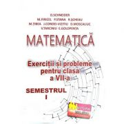 Matematica, exercitii si probleme pentru clasa a VII-a, semestrul I - Delia Schneider imagine librariadelfin.ro