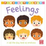 Find Out About: Feelings - Pat-a-Cake