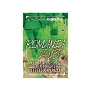 Romania 2013: starea economica sub povara efectelor crizei - Constantin Anghelache