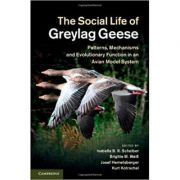 The Social Life of Greylag Geese: Patterns, Mechanisms and Evolutionary Function in an Avian Model System - Isabella B. R. Scheiber, Brigitte M. Weib,