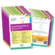 Sinteze teoretice - Matematica - Clasa a V-a - Algebra si geometrie imagine librariadelfin.ro