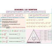 Binomul lui Newton/ Elemente de combinatorica - Plansa dubla (MP23) imagine librariadelfin.ro