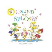 Colour with Splosh - David Melling