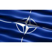 Drapel NATO (900X600mm/110) - poliester cu microperforatii imagine librariadelfin.ro