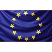 Drapel Uniunea Europeana (900X600mm/160) - poliester imagine librariadelfin.ro