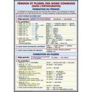 Plansa dubla - Feminin et pluriel des noms communs/ L'Article Partitif (FP1) imagine librariadelfin.ro