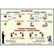 Plansa dubla - Les Articles/ Adjectifs et Pronoms Demonstratifs (FP9) imagine librariadelfin.ro