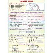 Numere reale/Functii - Plansa fata-verso (MP3)