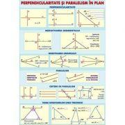Perpendicularitate si paralelism/Puteri si radicali - Plansa fata-verso (MP7)