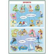Plansa Sports/The Human Head (DUO) - Plansa viu colorata, cu 2 teme distincte imagine librariadelfin.ro