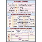 Plansa dubla - Pronoms relatifs/ Le pluriel des noms (FP4) imagine librariadelfin.ro