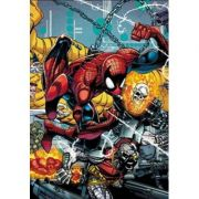 Spider-man By David Michelinie And Erik Larsen Omnibus - David Michelinie, Jim Owsley