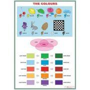 The colours/Jobs (DUO) - Plansa viu colorata, cu 2 teme distincte imagine librariadelfin.ro