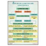 Tipuri de comunicare lingvistica - Plansa, 700x1000mm, cu sipci (LR26) imagine librariadelfin.ro
