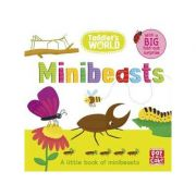 Toddler's World: Minibeasts - Pat-a-Cake