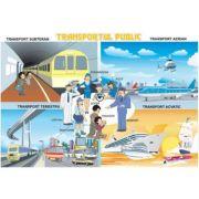Transportul public / Pericolele strazii (DUO) - Plansa cu 2 teme distincte imagine librariadelfin.ro