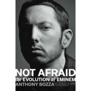 Rhyme and Reason: The Evolution of Eminem - Anthony Bozza