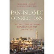 Pan Islamic Connections - Christophe Jaffrelot, Laurence Louer