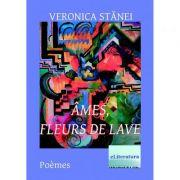 Ames, fleurs de lave - Veronica Stanei Macoveanu