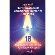 Surprinzatoarele coincidente numerice ale vietii (eBook PDF) – vol. 3 Big Bang si intepatura pe frunza de lotus - Ligia Hotin