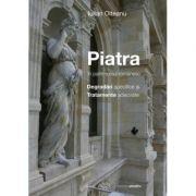 Piatra in patrimoniul romanesc Degradari specifice si tratamente adecvate - Iulian Olteanu imagine librariadelfin.ro