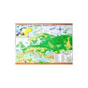 Harta Fizica a Europei. Harta Politica a Europei imagine librariadelfin.ro