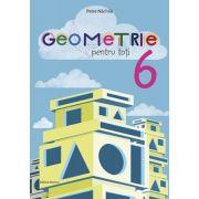 Geometrie pentru toti, clasa a VI-a - Petre Nachila imagine librariadelfin.ro