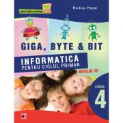 Informatica pentru ciclul primar Nivelul trei clasa a IV-a - Rodica Matei imagine librariadelfin.ro