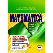 Culegere de exercitii. Matematica, Clasa a IX-a. Sinteze si teorie. Algebra, Geometrie-Trigonometrie - Catalin Petru Nicolescu imagine librariadelfin.ro