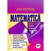 Culegere de exercitii. Matematica, Clasa a X-a. Sinteze si teorie. Algebra, Geometrie-Trigonometrie - Catalin Petru Nicolescu imagine librariadelfin.ro