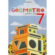 Geometrie pentru toti. Clasa a7-a - Petre Nachila imagine librariadelfin.ro