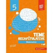 Matematica. Teme recapitulative. Clasa a V-a - Anton Negrila, Maria Negrila imagine librariadelfin.ro