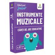 Instrumente muzicale. EduCard Junior plus. Carti de joc educative imagine librariadelfin.ro