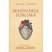 Masinaria sublima - Stephen Amidon imagine librariadelfin.ro