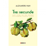 Trei secunde sau cum sa nu ramai un nimeni toata viata - Alexandru Nan imagine librariadelfin.ro
